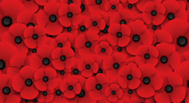 Poppy Flower Banner Remembrance Day